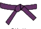 belt-purple