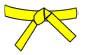belt-yellow